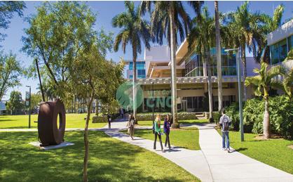 university-of-miami