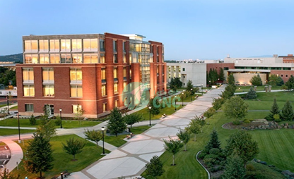 washington-state-university